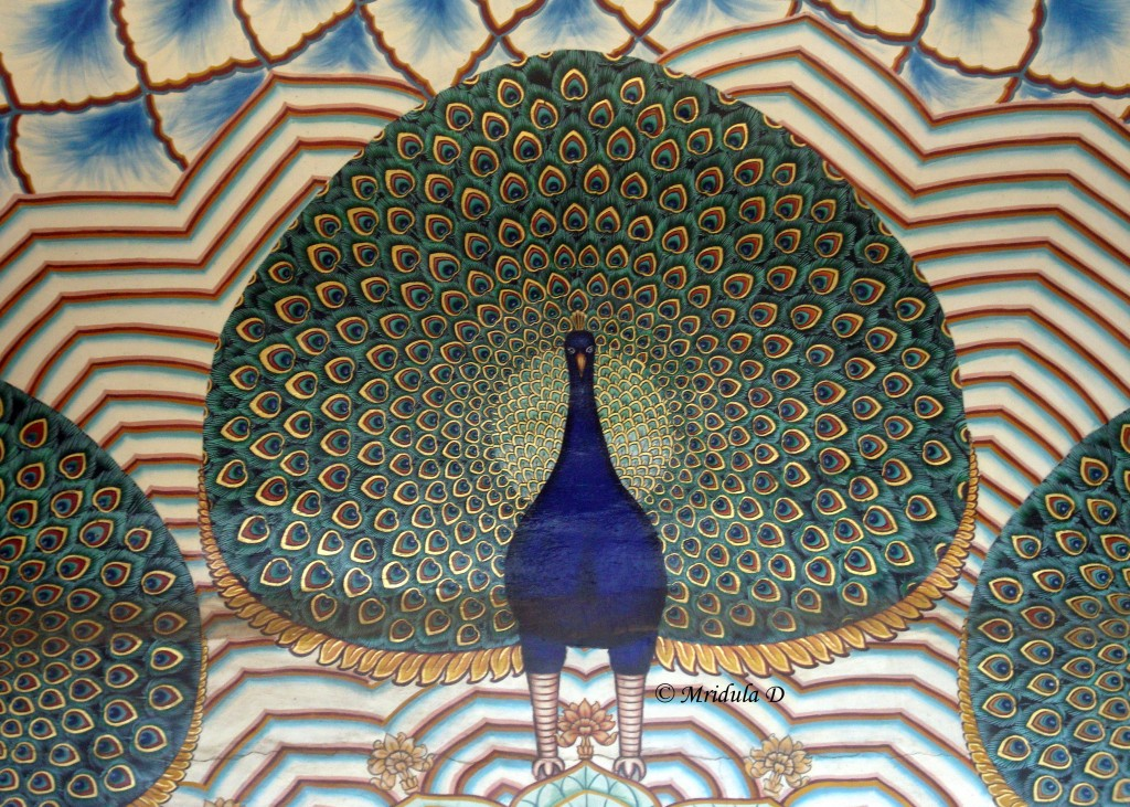 Peacock Designs on a Jewellery Shop