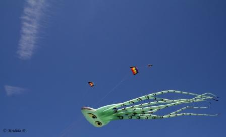 A Green Octopus at Morecambe Kite Festival