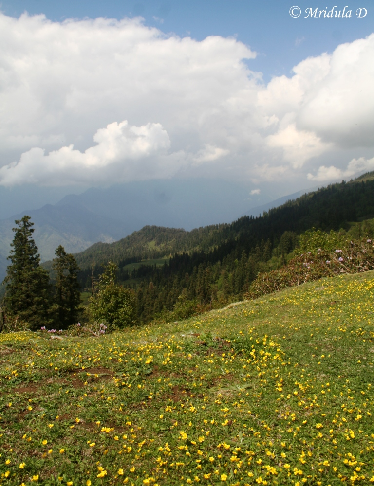 A View Near Dhunda, While Trekking at Uttarakhand