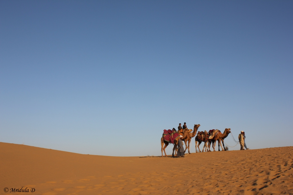 Camel Men, Kids and Camels Going Home, Lakhmana Sand Dunes Jaisalmer