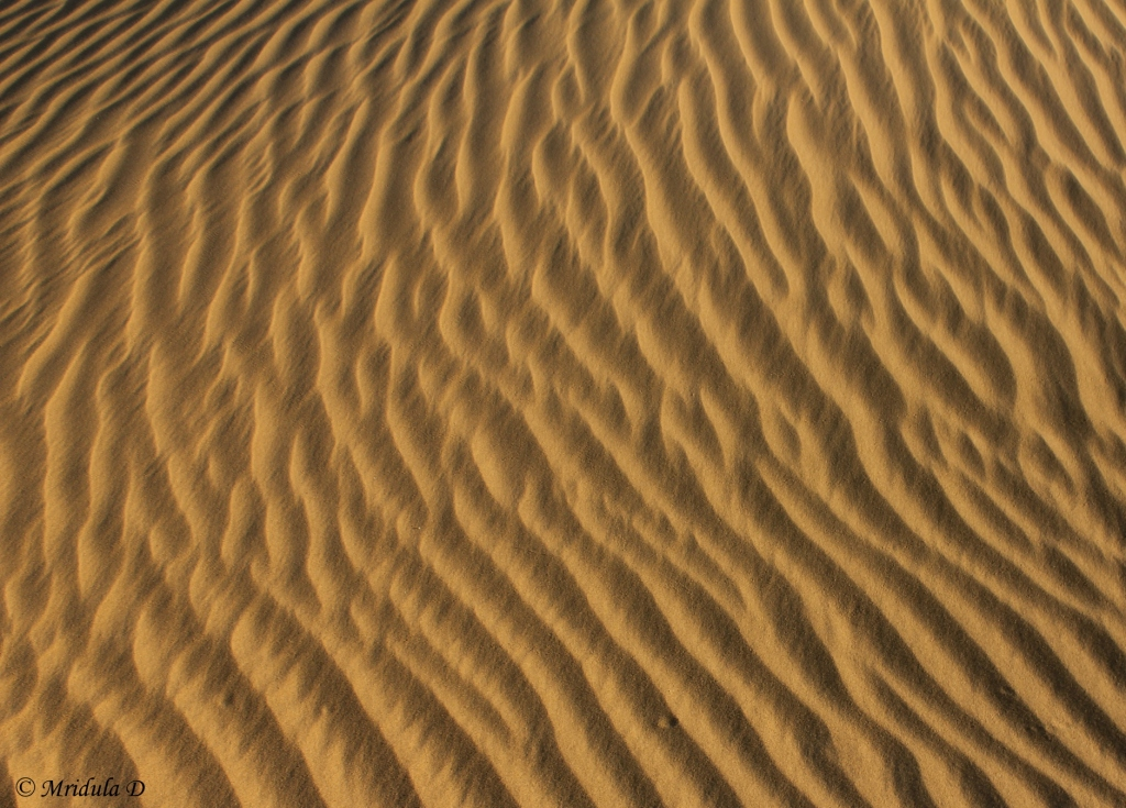 Patterns on Sand Dunes, Jaisalmer