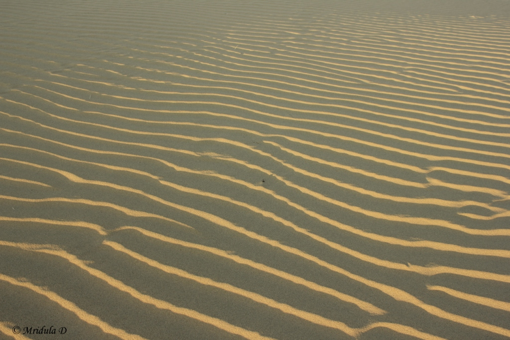 Sand Dune Patterns, Jaisalmer