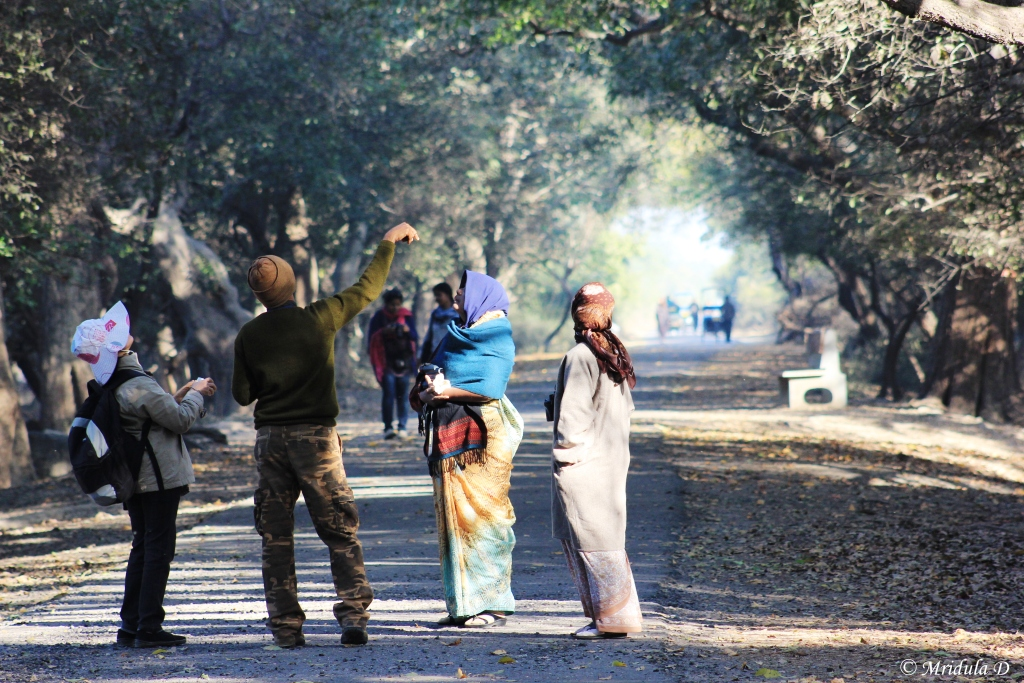 Bird Watchers at Bharatpur, Rajasthan