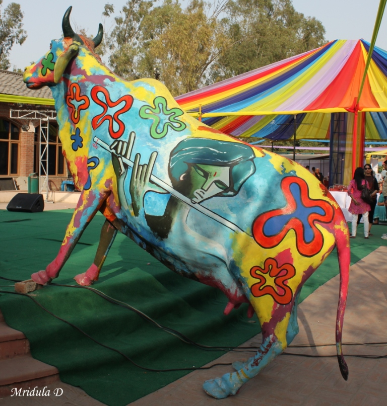 A Colorful Cow for Holi