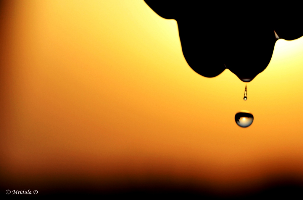 Water Drops and the Evening Sky