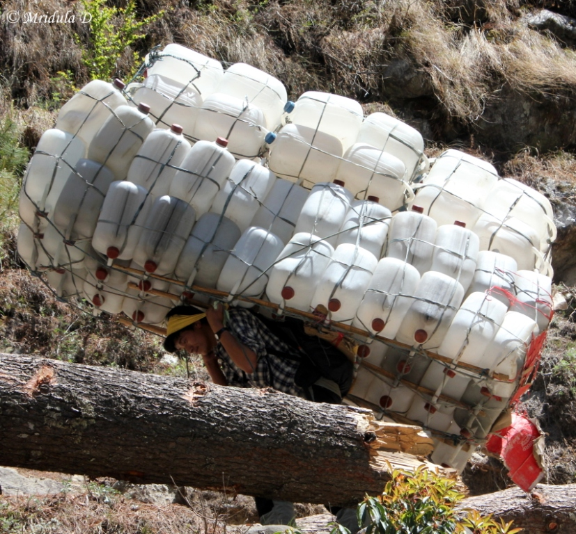 The Loads They Carry! Everest Base Camp Trek, Nepal