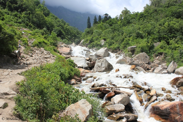 Lakshman Ganga River, Govindghat to Ghangaria, Valley of Flowers Trek