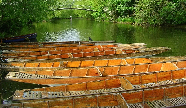Punt Boats at the Cherwell River, Oxford, UK