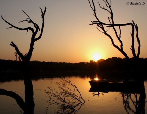 Sunset at Kauz Khas, District Park Lake, Delhi