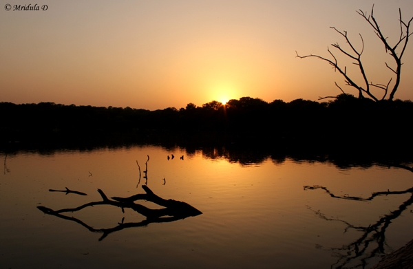 Sunset at the Hauz Khas Lake, Delhi