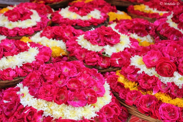 The Rose Baskets as Offerings at Ajmer Sharif, Ajmer, Rajasthan