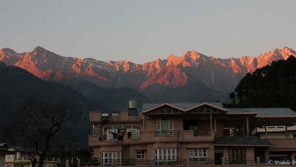 Dhauladhar Mountains, Palampur, Himachal Pradesh, India