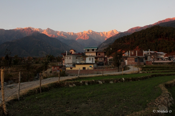 Palampur at Sunset, Himachal Pradesh, India