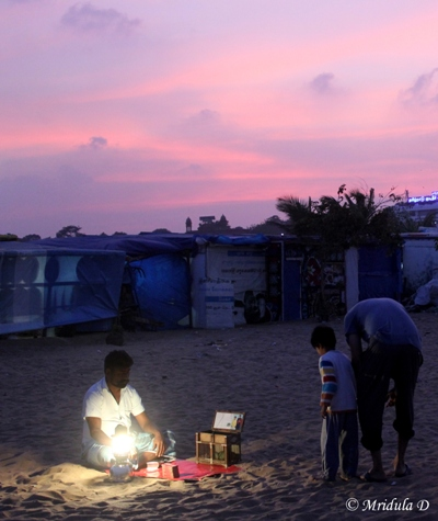 A Fortune Teller at Marina Beach, Chennai