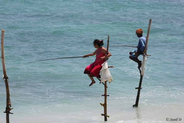 A Fisherman and a Tourist doing Stick Fishing, Koggala, Sri Lanka