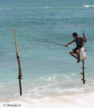 A Tourist Doing Stick Fishing, Sri Lanka