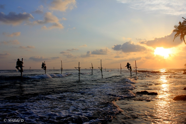 Stick Fishing, Sri Lanka