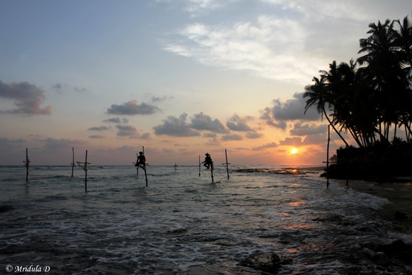 Stilt Fishing, Sri Lanka