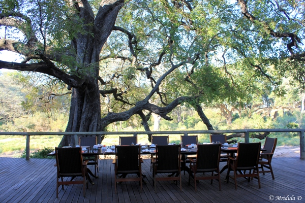 The Open Deck, Tintswalo Safari Lodge, South Africa