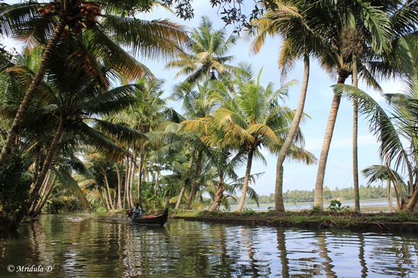 Beautiful Kerala Backwaters
