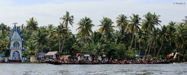 Practicsing for the Boat Race, Alleppey, Kerala