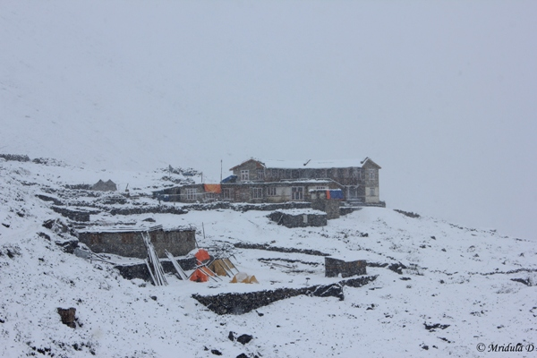 The Winter Wonderland in June, Letdar, Annapurna Circuit Trek, Nepal
