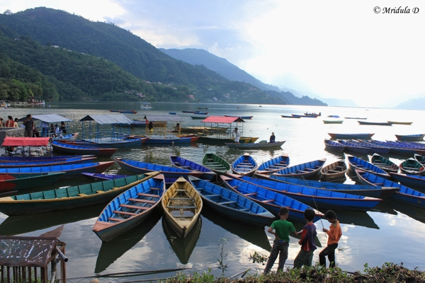 Boats at Phewa Lake, Pokhara, Nepal