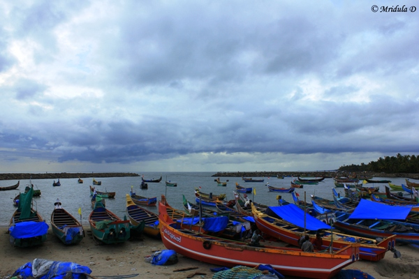 Chettanam Fishing Harbour, Kerala