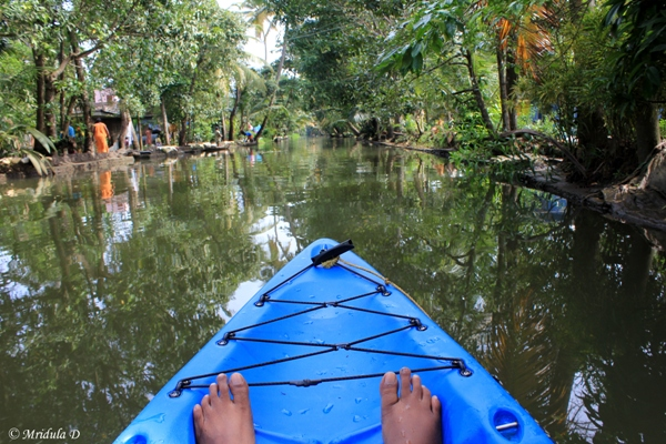 Kayaking in Kerala Backwaters