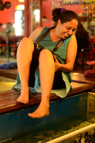 The Fish Pedicure, The Pub Street, Siem Reap, Cambodia