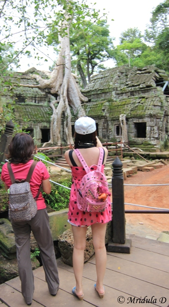 Tourists at Ta Prohm, Cambodia