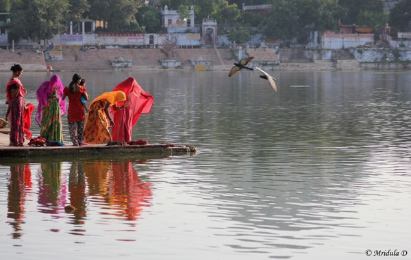 A Riot of Colors, Pushkar Lake, Rajasthan