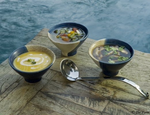 Healthy Soups from The Farm