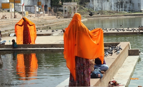 Flaming Orange at Pushkar Lake, Rajasthan