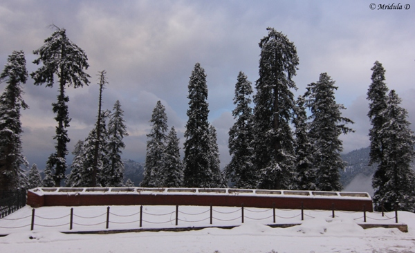 Snow at Narkanda, Himachal Pradesh