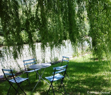 A Table in the Weeping Willow, Terma Linca Resort, Thimphu