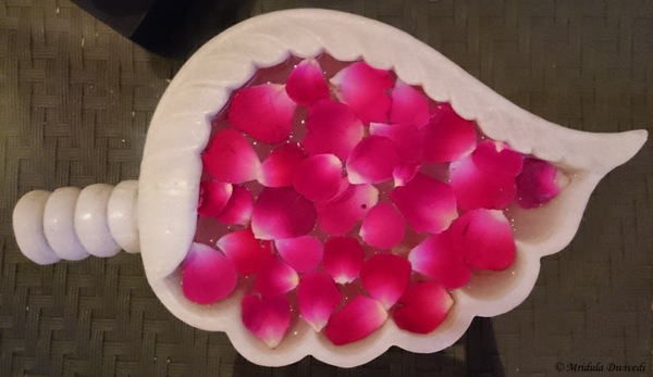 Rose petals at a spa