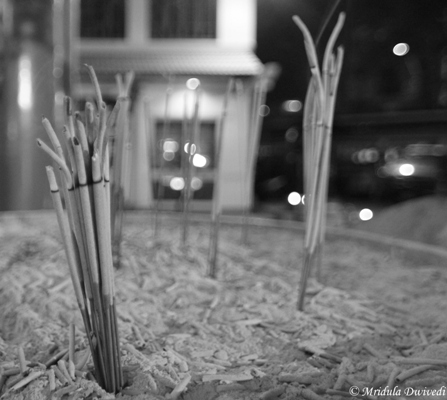 Incense Sticks at Kuan Yim Shrine, Bangkok