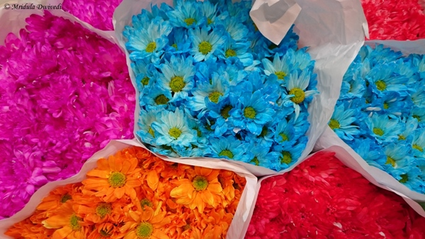 Flowers at Night Market