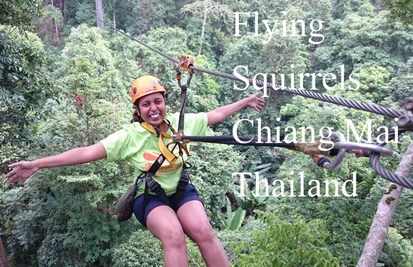 flying-squirrels-chaing-mai