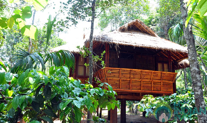 Bamboo Cottages in Wayanad