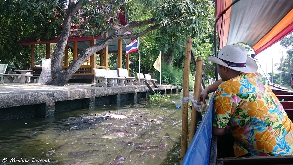 feeding-fish-bangkok-canal-tour