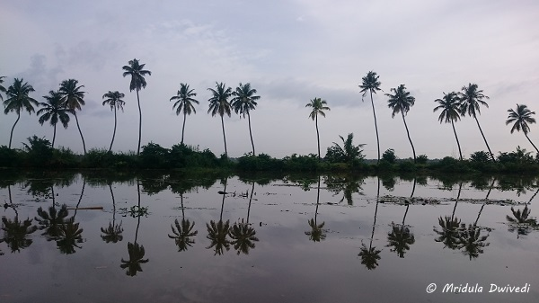 backwaters-kumarakom