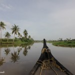 A Canoe Ride in the Vembanad Lake