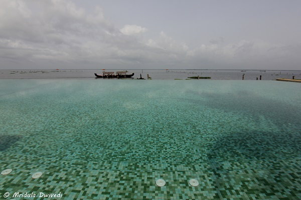 infinity-pool-kumarakom-lake-resort