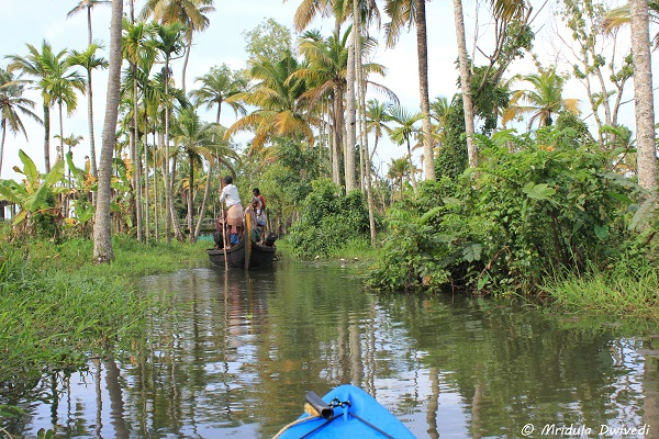 kayaking-kerala-backwaters
