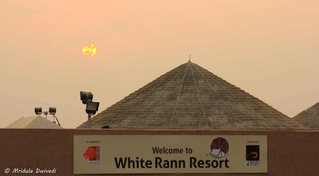 white-rann-resort-dhordo