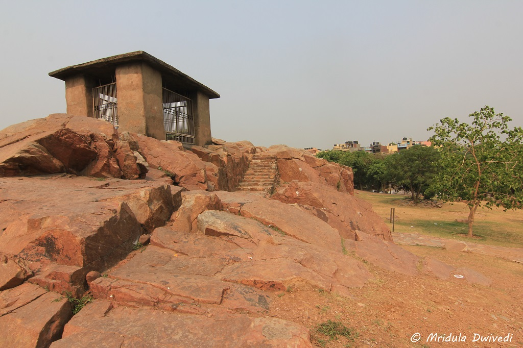 ugly-protection-ashoka-rock-edict-delhi