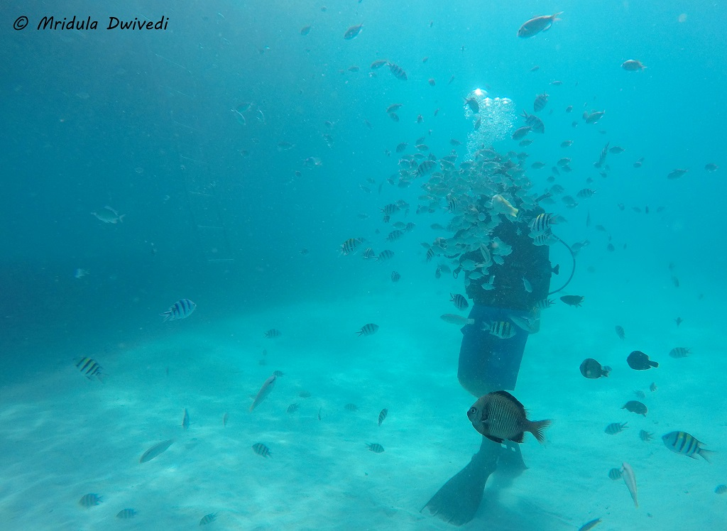 Helmet Diving In Boracay Philippines- It Is A Lot Of Fun