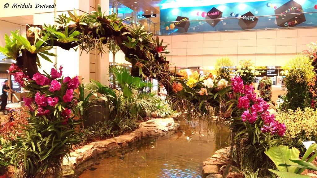 orchid-garden-changi-t2